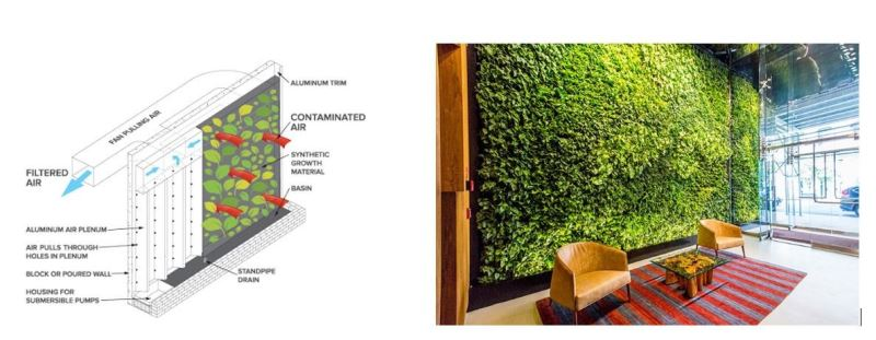 Afbeelding: Figure 3 - Biophilia as a way to control indoor climate for human comfort.png
