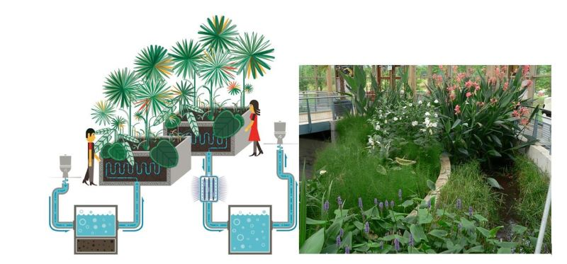 Afbeelding: Figure 6 - Biophilia as a way to control indoor climate for human comfort.png